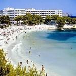 Ibiza Stag